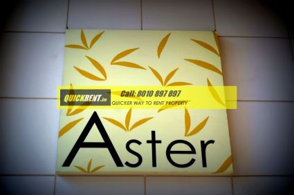 Apartments for Rent in Park View Spa - Aster Tower