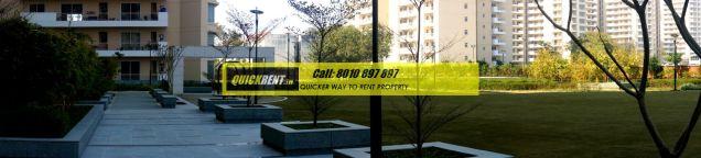 gurgaon luxury apartments
