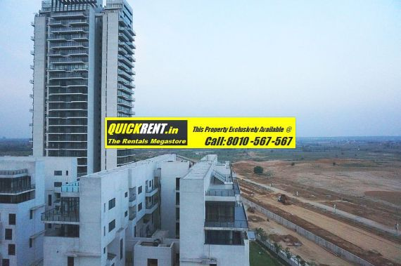 Grand Arch for Rent 006