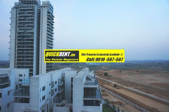 Grand Arch for Rent 009