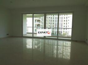 Expats Gurgaon 08