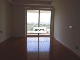 Expats Gurgaon 25